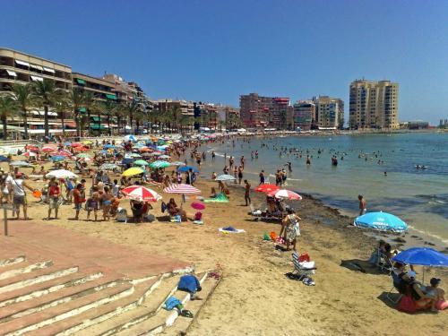 Plaża Torrevieja
